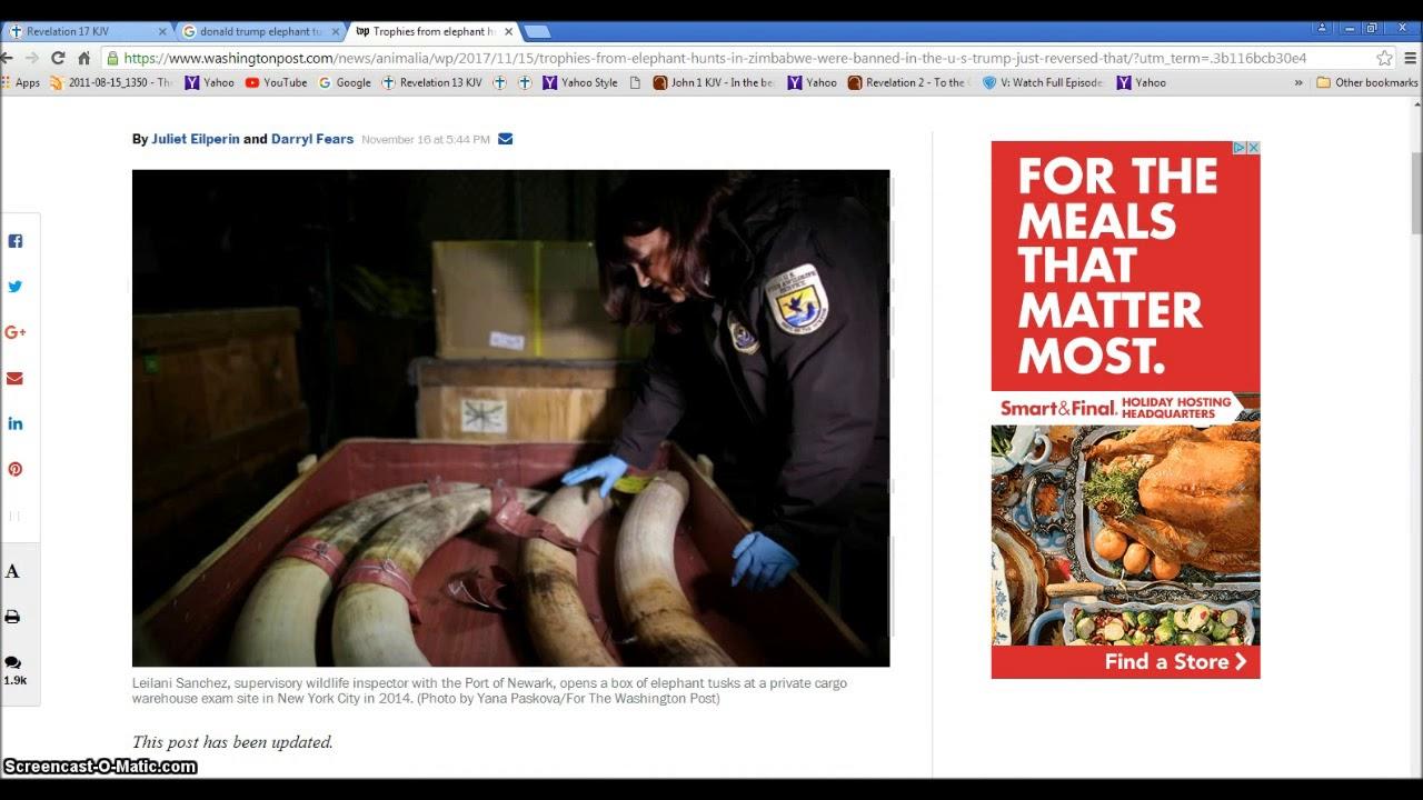 Donald trump elephant trophies rev 911 beast rising illuminati donald trump elephant trophies rev 911 beast rising illuminati freemason symbolism buycottarizona Gallery