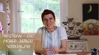 Akrep burcu Haziran Astroloji Yorumu-Su Karakuş