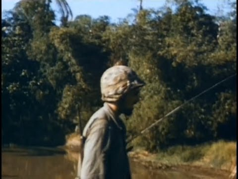 Dutch Marines Brigade - Indonesian War of Independence- In HD Color 1946