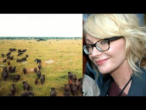 Uganda Is Still Safe for Tourists: Travel Guide