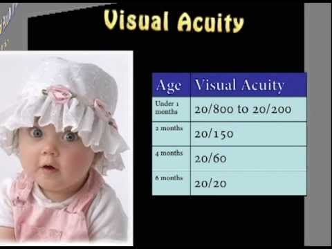 Infant Vision Development From Birth to two Several weeks