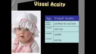 Infant Vision Development