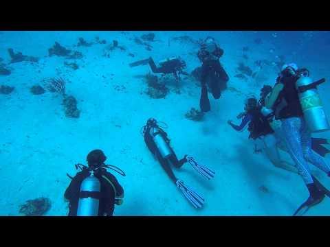 POV Diving - Chau Kanaab - Cozumel - México