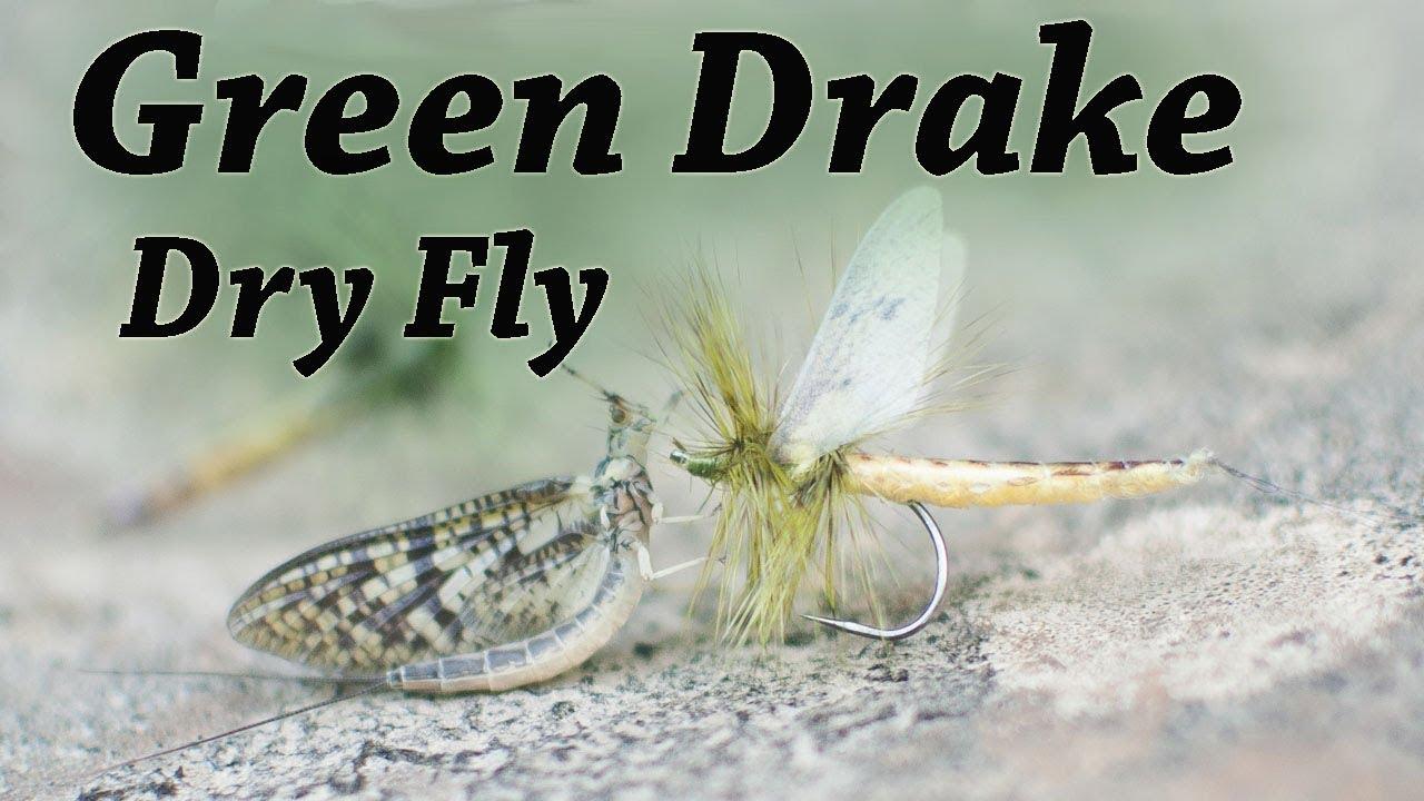 NEW HAIR WING DUN COLORADO GREEN DRAKE #10 ONE DOZEN fly fishing flies
