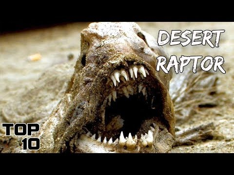Top 10 Scary Things Found In The Desert