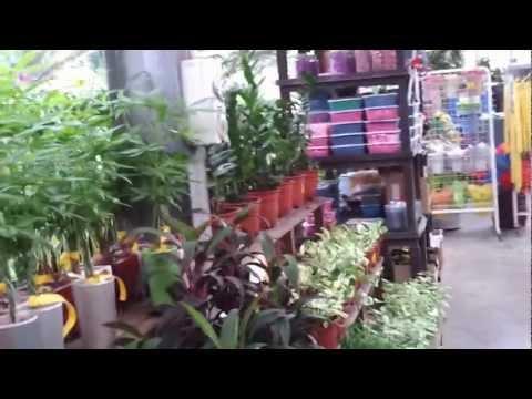 GoodWood Florist Singapore