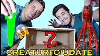 CE ESTE ÎN CUTIE !! 😱 (WHAT'S IN THE BOX CHALLENGE)