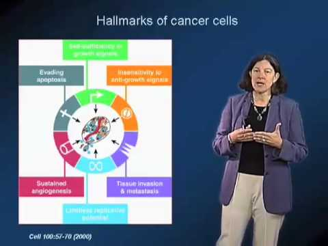 Mary Beckerle (University of Utah) Part 1: Adhesion, Signaling and Cancer