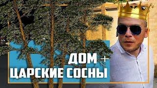 """Частные дома в Сочи 2 : """"Дом на краю обрыва!"""""""