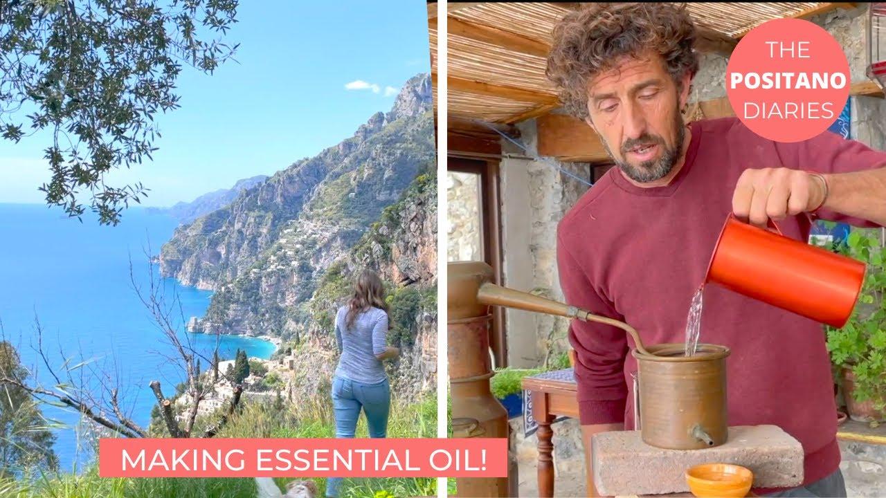 HOW TO MAKE ESSENTIAL OIL | A Day at La Selva Positano | The Positano Diaries EP 120