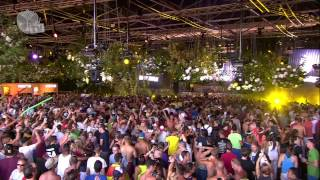 Tomorrowland 2013 - Wolfpack