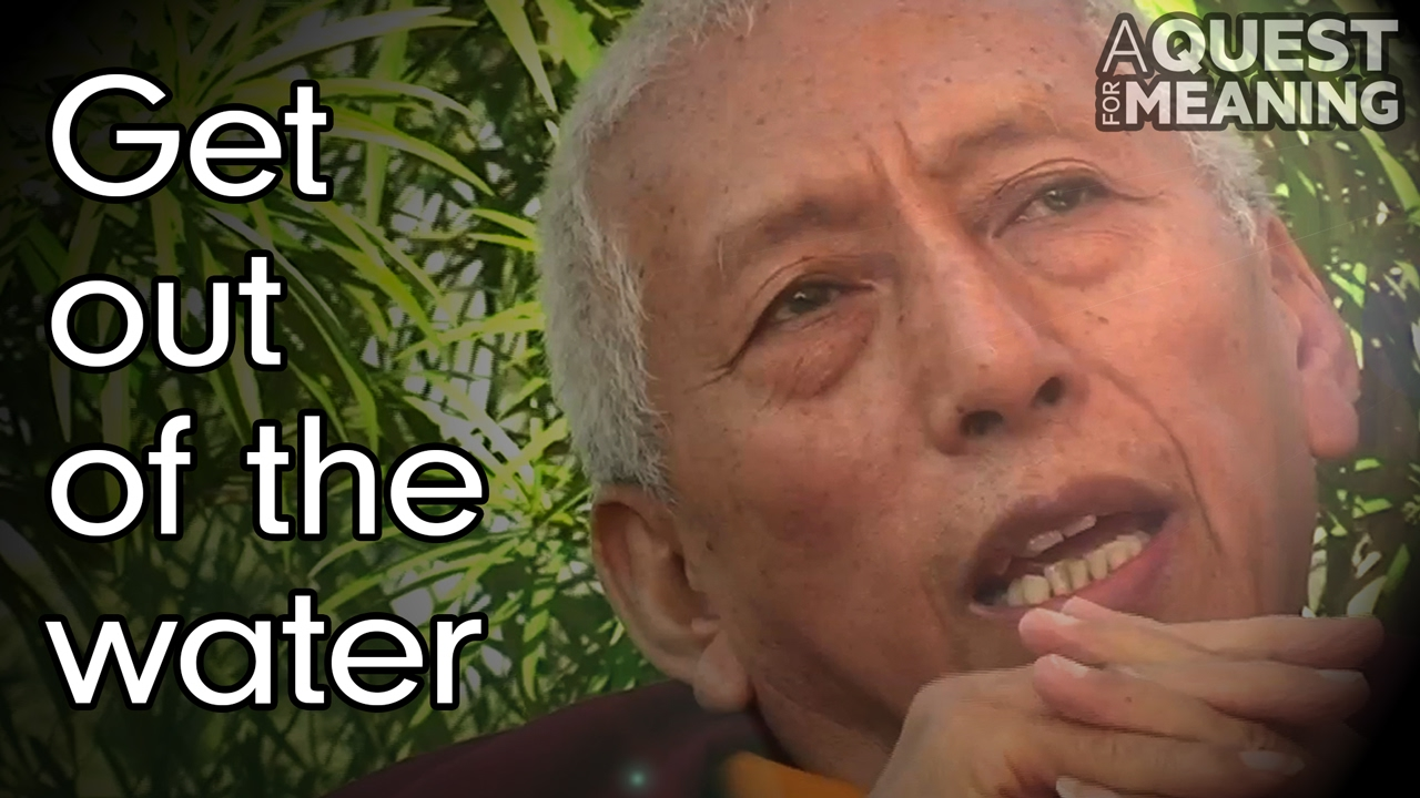 """""""Swim against the current or get out of the water"""" by Samdhong Rinpoche"""