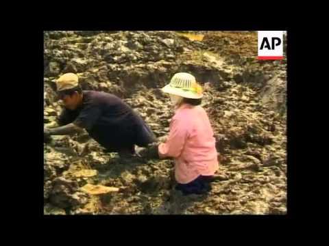 VIETNAM: COFFEE CROP UNDER THREAT FROM SEVERE DROUGHT
