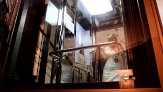 Свадьба в Гомеле. Виталий, Елена. 2012