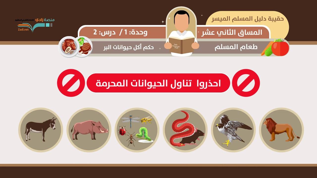 حكم أكل حيوانات البر الشيخ فهد باهمام U1l2 أحكام الأطعمة منصة زادي Youtube