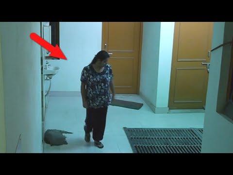 10 случаев нападения призраков на людей