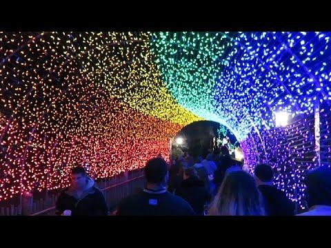 Festival Of Lights! Cincinnati Zoo 2016!