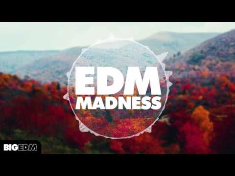 Big EDM - EDM Madness [4.3 GB of Construction Kits, Kicks, Drum Samples, Sylenth1 & Spire Presets]