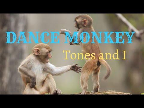 tones-and-i---dance-monkey-mp3