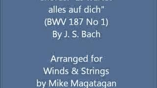 Chorus Es Wartet Alles Auf Dich BWV 187 No 1 For Winds Strings