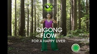 Qigong flow for a happy liver dvd / video on demand complete routine to purge, tonify and nourish the gall bladder. comes with op...