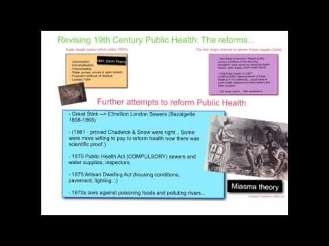 19th century public health essay Ringen k edwin chadwick, the market ideology, and sanitary reform: on the nature of the 19th-century public health movement international journal of health services  lopez r (2012) nineteenth-century reform movements in: building american public health  ris papers reference manager refworks.