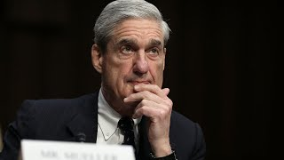 Senate bill tries to protect special counsel