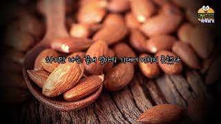 도규새조 - 소설 '아몬드' 90초 책소개