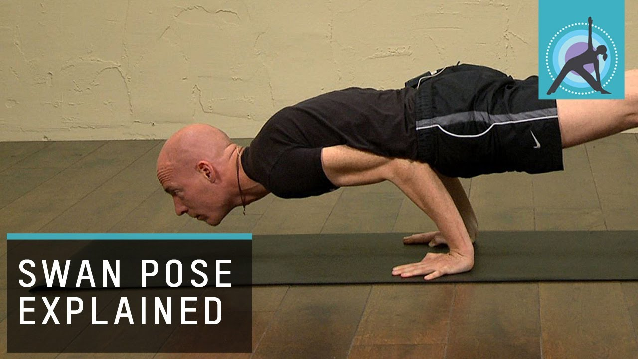 Swan Pose Explained Yoga With Olav Aarts Youtube