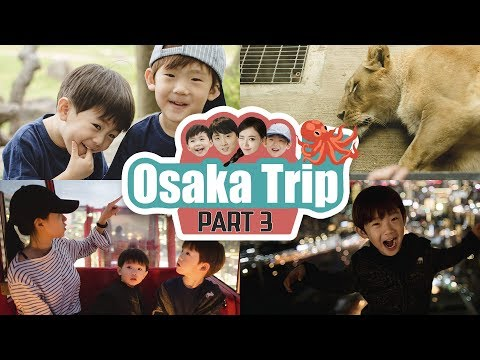 JAPAN OSAKA VLOG | PART 3 - Tennoji Zoo/Namba Dotonbori/Umeda 오사카여행 3탄!!