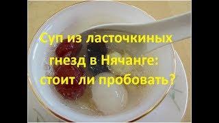 Суп из ласточкиных гнезд в Нячанге: где и зачем попробовать