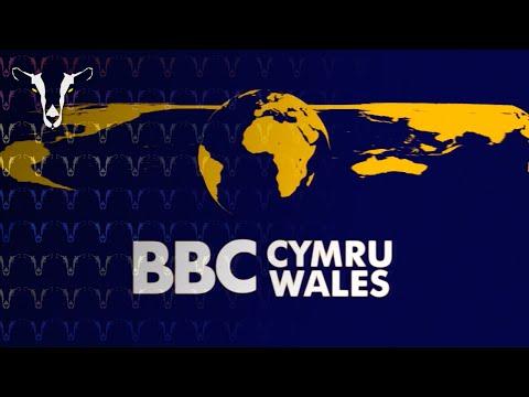 [RECREATION] BBC Cymru Wales Widescreen Globe