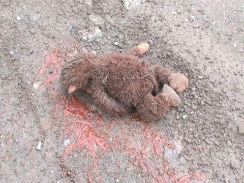 Baby Sasquatch Found Dead Youtube