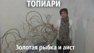 Топиари.Золотая рыбка и аист(, 2015-03-11T05:23:25.000Z)