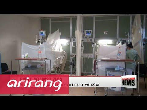 World Health Organization backs GM mosquito trials to fight Zika