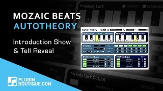 Using Mozaic Beats AutoTheory In Ableton - Flash Focus Plugin Spotlight