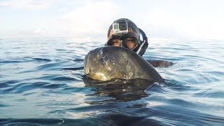 4K Indonesia spearfishing travel - Life as a fisherman