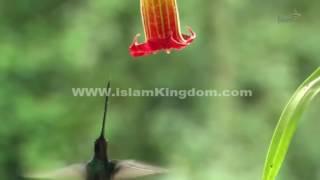 99 имен Аллаха - Наделяющий уделом.