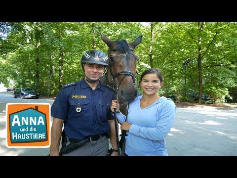 Ein Tag Mit Polizeipferden Information Fur Kinder Anna Und Die Haustiere Spezial Youtube