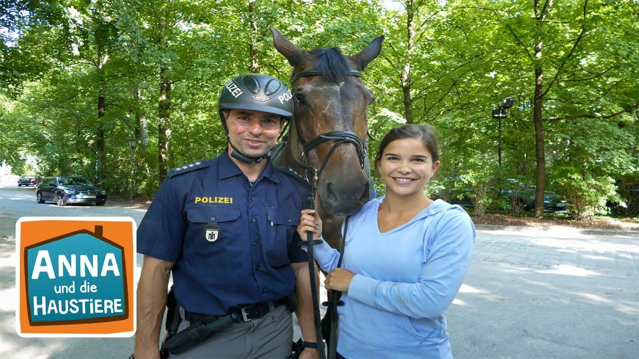 Ein Tag mit Polizeipferden | Information für Kinder | Anna und die Haustiere