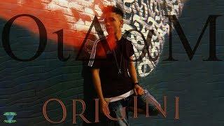 OiDaM - ORIGINI