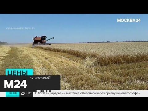 Смотреть фото Почему растут цены на хлеб - Москва 24 новости россия москва