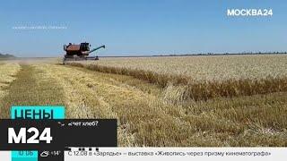 Смотреть видео Почему растут цены на хлеб - Москва 24 онлайн