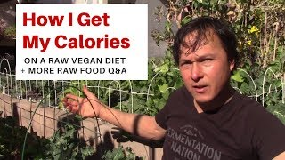 How I Get My Calories on a Raw Vegan Diet and more Raw Food Q&A