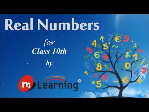 Real Numbers: Classification of Real Numbers - STD X - 01/15