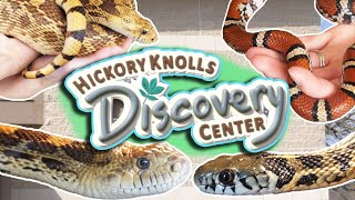 Touring Hickory Knolls Discovery Center!