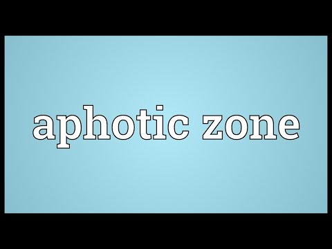 Aphotic zone Meaning