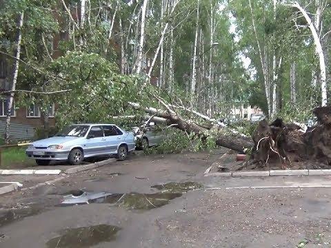 Разбитые машины, вырванные тополя и снесенный с крыш шифер: на Лесосибирск обрушился ураган