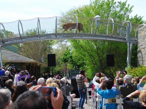 Philadelphia Zoo Vlog / America's First Zoo