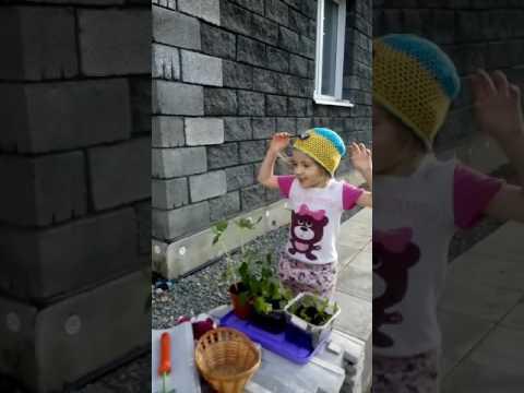 Карина заниматся посадкой гороха